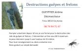 Gueyffier